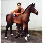 Pferd Fohlen braun