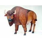 Buffalo mit Hörnern