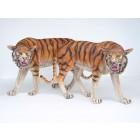 Tiger Rechts