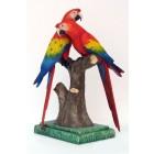 Hellrotes Ara-Pärchen Papageien