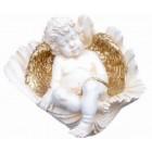 Engel schlafend in Muschel
