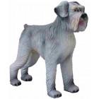 Riesenschnautzer Hund XXL