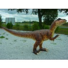 Allosaurus klein