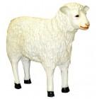 Schaf stehend groß