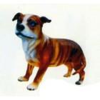 Bulldog stehend