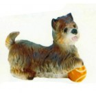Cairn Terrier mit Ball