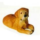 Labrador Welpen liegend