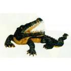 Alligator mit offenem Maul