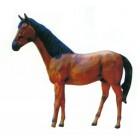 braunes Pferd mit schwarzer Mähne