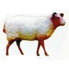 großes braunes Schaf mit weißer Wolle