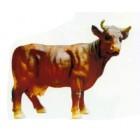 kleine braune Kuh mit Hörnern