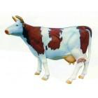braun weiß gefleckte Kuh