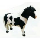 Pony schwarz weiß gefleckt