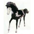 galoppierendes schwarz weißes Pferd