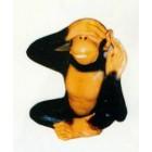 kleiner Affe Nichts sehen