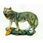 Wolf klein hält Ausschau