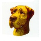 Hundekopf Deutsche Dogge