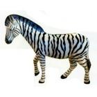 süßes Zebra laufend