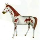 weißes Pferd mit brauner Mähne gepunktet