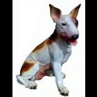 Kampfhund Bullterrier sitzend braun weiß